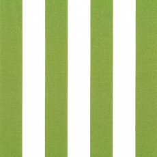Bekko Stripe Wide Width Grass Bekko Stripe is a 2cm wide stripe printed on a lovely medium weight 100 cotton sateen Suitable for a variety of home decorating projects but also a lovely weight for linen quilting bag making and apparel. Please Click the image for more information.