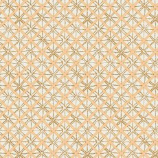 Wanderer Diamond Cloth Cereus  Please Click the image for more information.