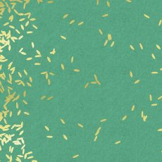 Cotton + Steel Mochi Scattered Mint Mochi Scattered by Cotton  Steel and is a lovely scattered seed design printed on a medium weight cottonlinen blend. Please Click the image for more information.