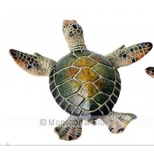Green Turtle large 12cm Green Turtle large 12cm Please Click the image for more information.