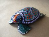 small dot turtle small dot turtle30cmminimum 6 Please Click the image for more information.