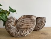 Pair Of Rustic Nautilus  Please Click the image for more information.