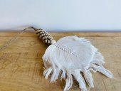 Shell & Macrame Feather Necklace  Please Click the image for more information.
