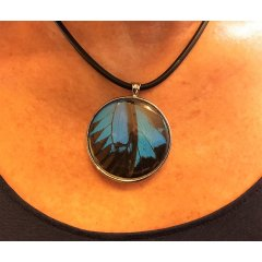 Australian Made Recycled Butterfly Wing Pendants - Ulysses (Dunk Island) Butterfly Wing Pendants set in Pewter are designed using real Butterfly Wings which are harvested from non threatened species from around the world T. Please Click the image for more information.