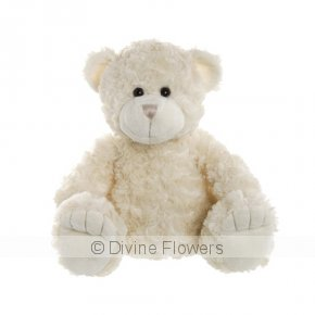 Product Image for Teddy Bear Georgie