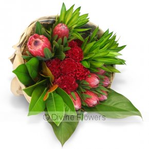 Product Image for Protea Wrap