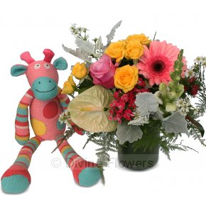 Product Image for Dotty The Cow & Posy Vase