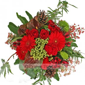 Product Image for Festive Christmas Flowers