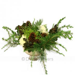 Product Image for Christmas Foliage Arrangement