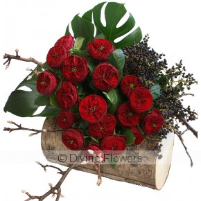 Product Image for Grand Jubilee Roses