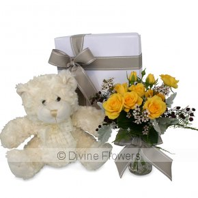 Product Image for Georgie Bear & Vintage Bottle