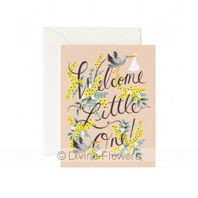 Product Image for WELCOME LITTLE ONE