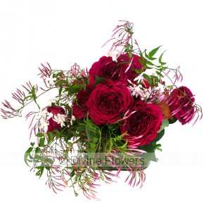 Product Image for Zen Roses
