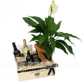 Product Image for Classic House Warming Hamper