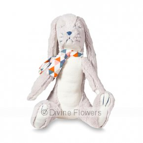 Product Image for Walter Bunny