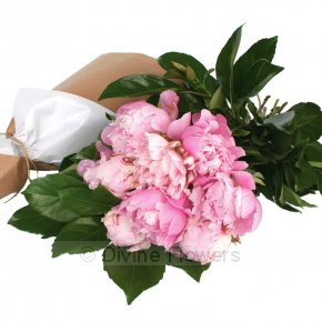 Product Image for Peony Flower Wrap
