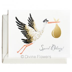 Product Image for Special Delivery Stork Card