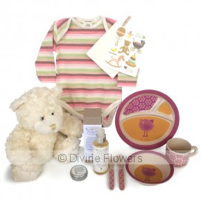Product Image for Baby Girl Deluxe Hamper