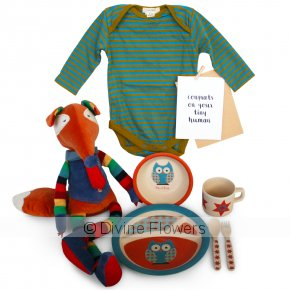 Product Image for Fletch Hamper For The Tiny Human