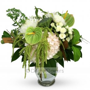 Product Image for White & Green Bouquet / Vase