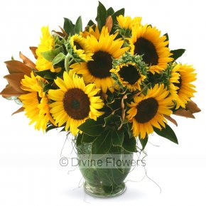 Product Image for Sunflower Vase