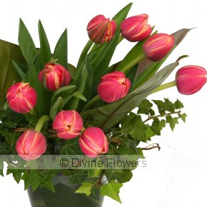 Product Image for Tulip Wrap Vase (more colours)