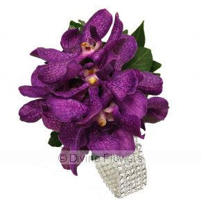 Product Image for Vanda Wrist Corsage