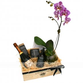 Product Image for Luxury Home Hamper