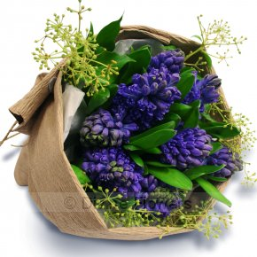 Product Image for Hyacinth Posy Wrap