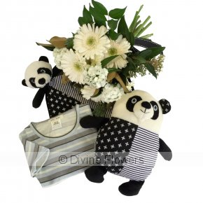 Product Image for Little Panda Newborn Gift