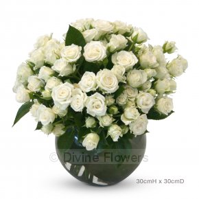 Product Image for Tea Roses Vase