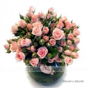 Product Image for Tea Rose Vase