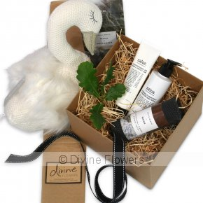 Product Image for Swan Princess Gift Set