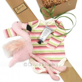 Product Image for Pheobe Flamingo Gift Set