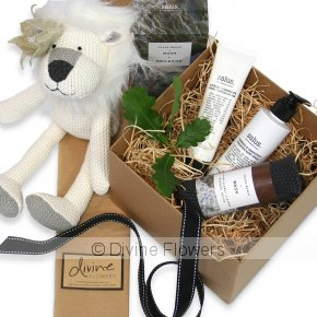 Product Image for Lancelot Lion Toy Gift Set