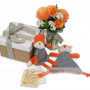 Product Image for Mabel Fox Gift Box