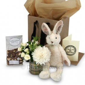 Product Image for Honey Bunny