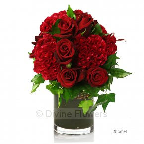 Product Image for Crazy Love (Red Roses With Celosia)