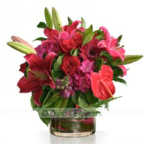 Product Image for Red/Pinks Bouquet/Vase