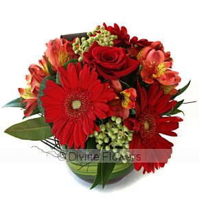 Product Image for Christmas Posy Vase