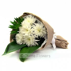 Product Image for Grand White Chrysanthemums